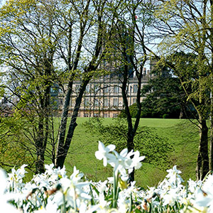 Spring Gardens & Champagne Picnic Afternoon Tea