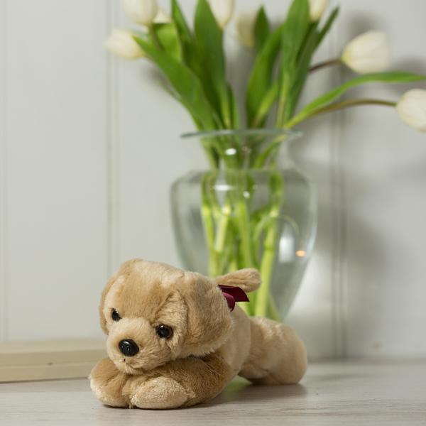 Finse Toy Dog