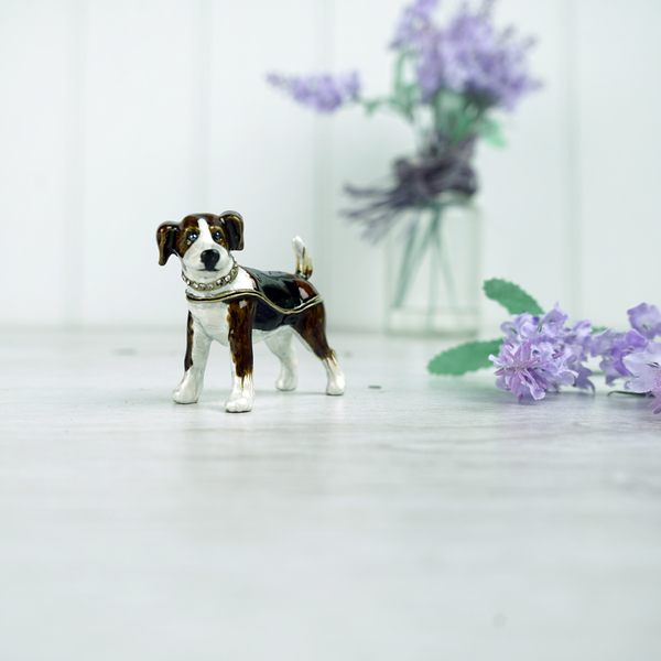 Brown and White Terrier Dog
