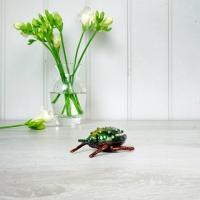 Beetle Trinket Box