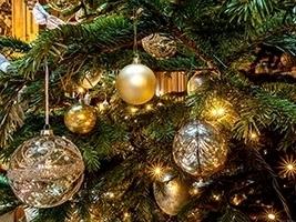 Festive Drinks Reception: 9th December