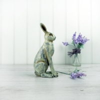 Small Grey Hare