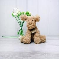 Soft Toy Dog - Fuddlewuddle