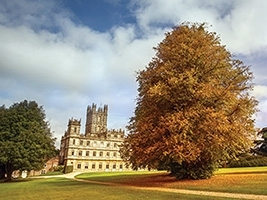 Oct 3rd - Nov 15th: Autumn Guided Tours