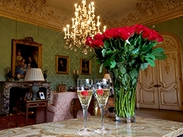 Valentines Castle Tour and Afternoon Tea: <br> 17th February